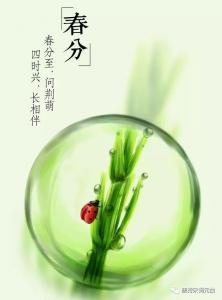 春分——唯有春光与诗词不可辜负